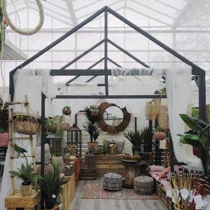invernadero hortalia